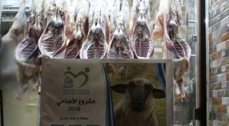 منظمة رحمة توزع الاضاحي على اللاجئين بالعيد